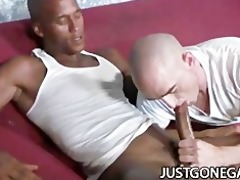 white stud worships big dark rod