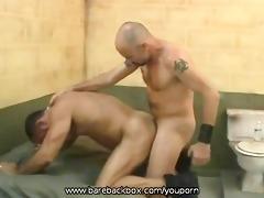 bareback dominant
